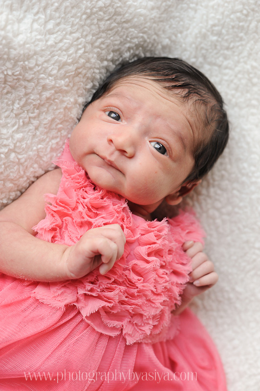 Sweet Baby Girl Pictures Wallpapers Day 20 New Jersey Newborn Baby Photographer Cliffside