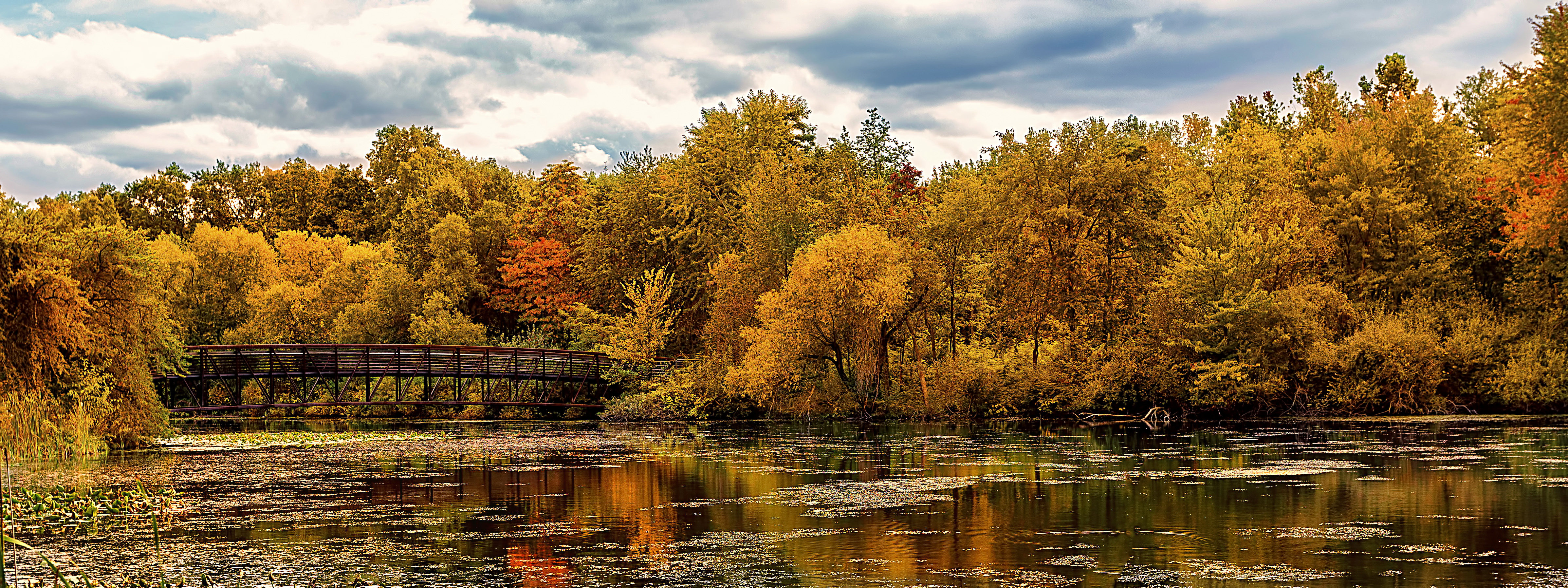 Early Fall Hd Wallpaper Bridge Beginning Of November Edward Byrne Photography
