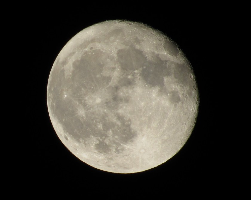 Tonight I took a picture of the harvest moon.