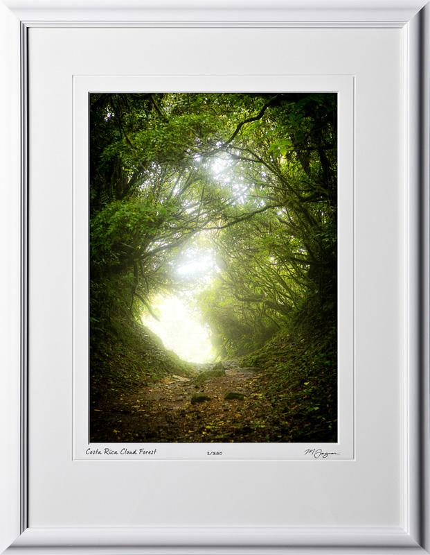 Costa Rica Fine Art Photography Prints \u2022 Photo Impressions - green photo frame