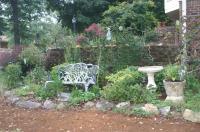 Backyard gardens photos