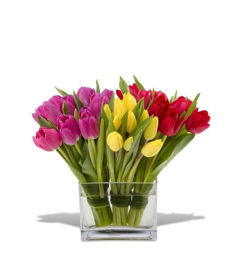 Tulips Flower Arrangement Tulip Flower Arrangement Photos