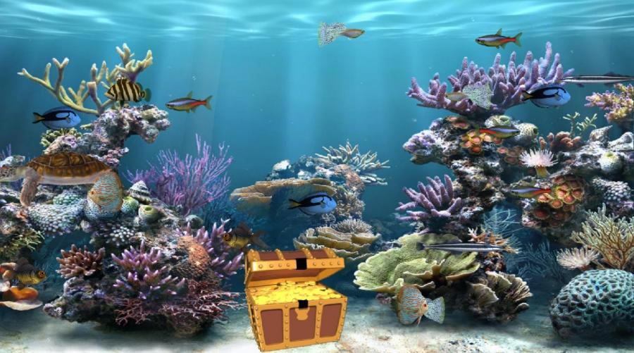Download Wallpaper Aquarium 3d 3d Aquarium Photo