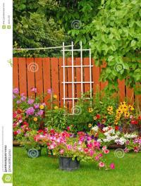 Backyard garden photo
