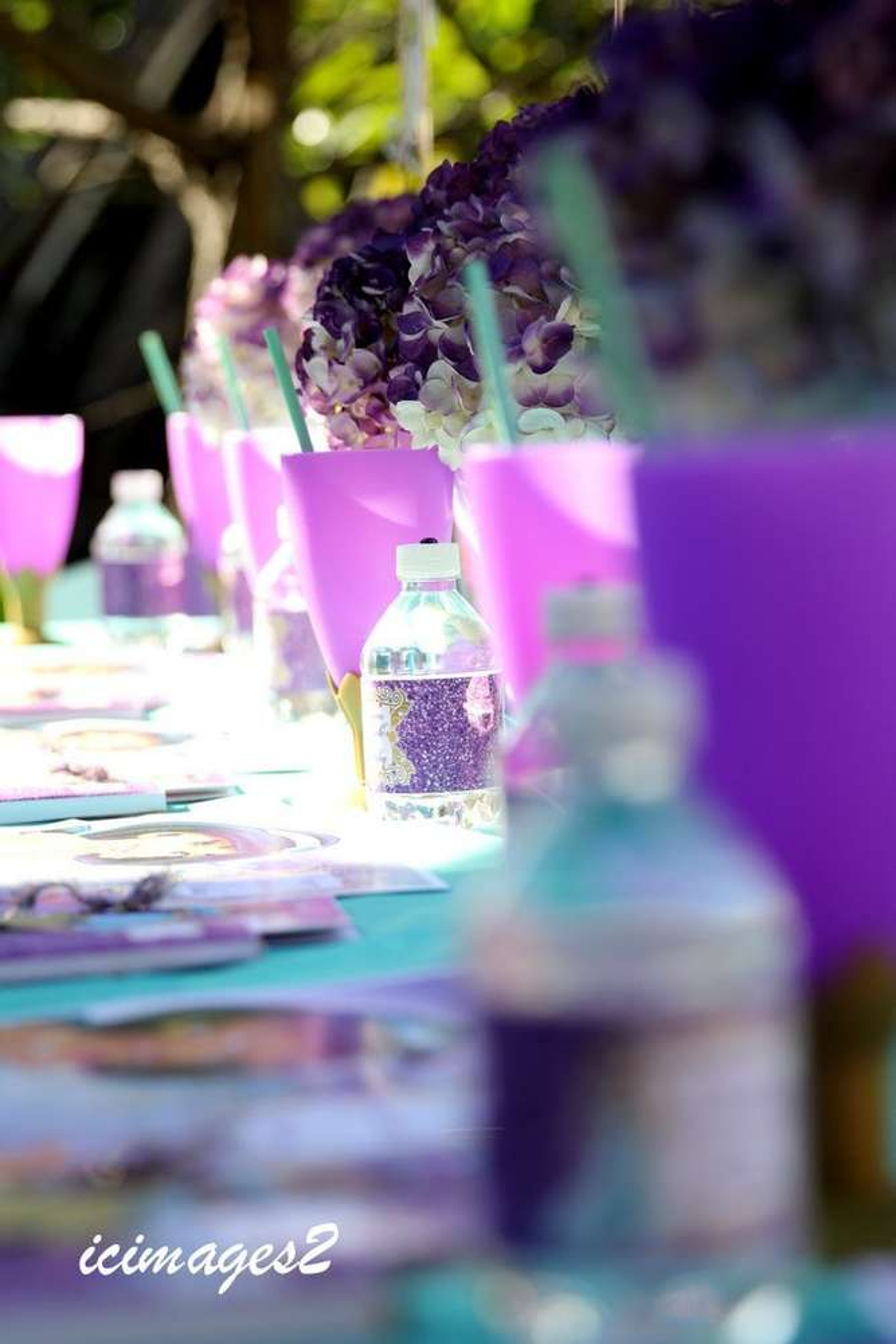 Princess Jasmine Birthday Party Ideas Photo 13 of 30 Catch My Party