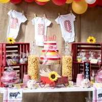 Farm Party Ideas for a Baby Shower | Catch My Party