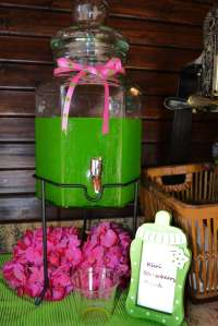 Pink And Green Baby Shower Themes | www.imgkid.com - The ...