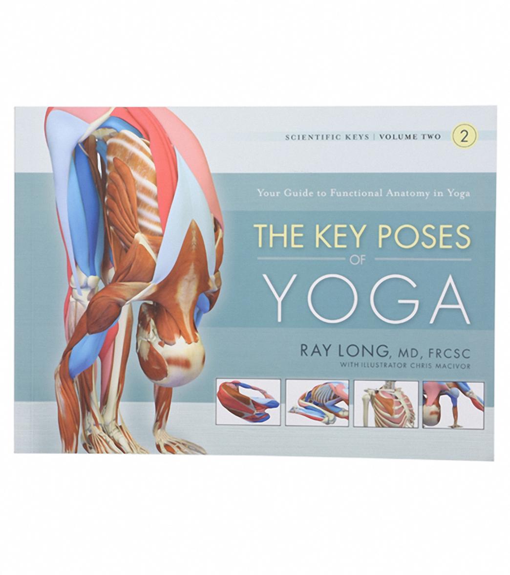 The Key Muscles Of Yoga Scientific Keys Pdf | Spotgymyoga.org