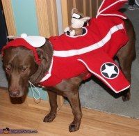 Airplane with Squirrel Fighter Pilot Dog Costume
