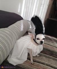 Bride of Frankenstein Dog Costume