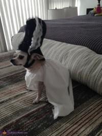 Bride of Frankenstein Dog Costume - Photo 3/3