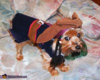 DIY Captain Jack Sparrow Dog Costume