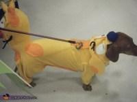 Catdog Halloween Costume