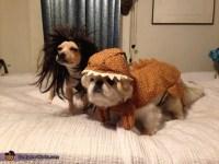 Caveman and Dinosaur Dog Costumes
