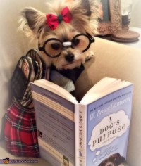 Cutest Nerd Ever Dog Costume