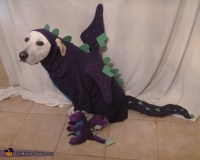 Homemade Dragon Dog Costume