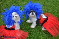 Dr. Seuss Inspired Thing 1 and Thing 2 Costume for Dogs