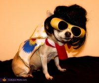 Elvis Dogs Costume