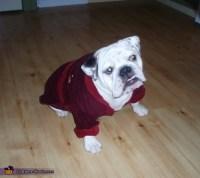 Hugh Hefner - Dog Costume Idea
