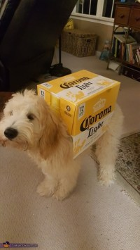 Dogs Carrying a Box of Corona Beer Costume - Photo 4/6