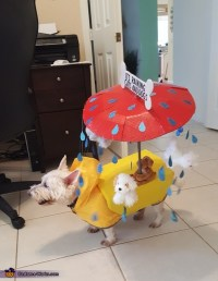 It's Raining Cats and Dogs Halloween Costume - Photo 2/5