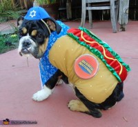 Kosher Dog Costume