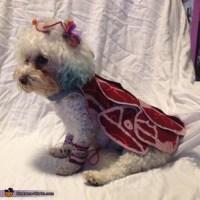 Lady Gaga Meat Dress Dog's Costume