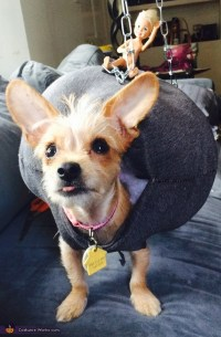 Miley Cyrus - Wrecking Ball Dog's Costume
