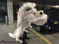 Neverending Story with Falcor and Atreyu Costume - Photo 2/3