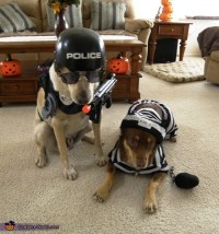 Police Dog and Prisoner Costume Ideas for Dogs