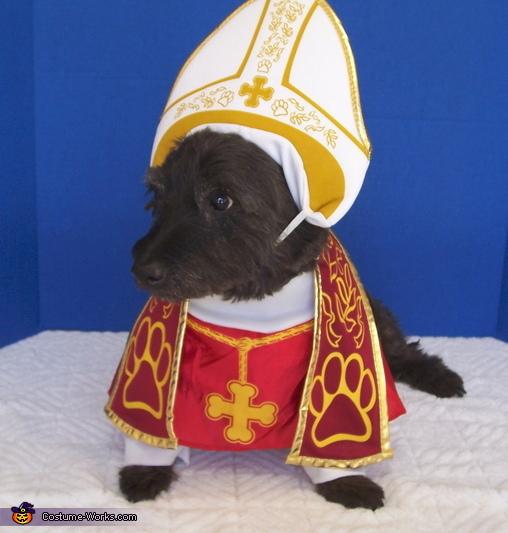 Pope Dog Costume