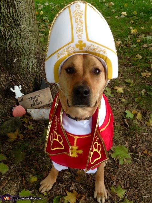 Pope Sonny Dog Costume