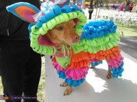 Puppy Pinata Costume