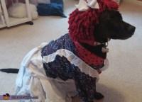Raggedy Ann Dog Costume