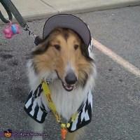Referee Dog Costume