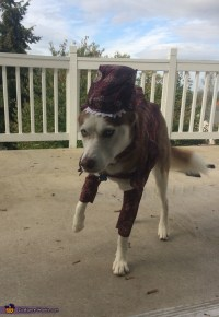 T-Rex Dog Costume - Photo 3/4