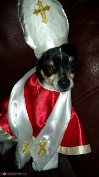 The Pope and Kim Davis Dogs Costume - Photo 2/3