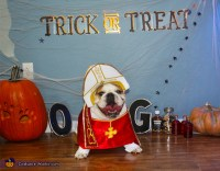 The Pope Dog Costume