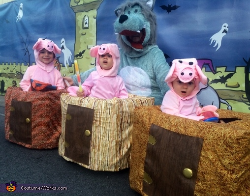 The Three Little Pigs And The Big Bad Wolf Costume