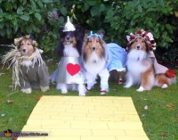 The Wizard of Oz - Costume Ideas for Dogs