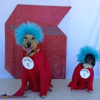 Thing 1 & 2 Dogs Halloween Costume