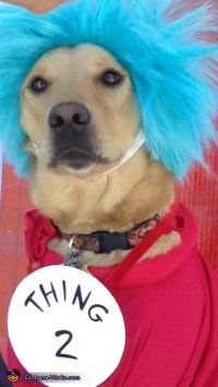 Thing 1 & 2 Dogs Halloween Costume - Photo 2/2