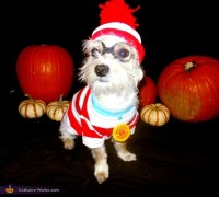 Waldo's Dog Woof Costume