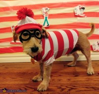 Where's Waldo Dog Costume Halloween