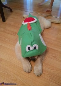 Yoshi Dog Costume - Photo 9/9