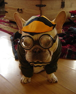 Homemade Costumes for Pets - Costume Works (page 25/50)