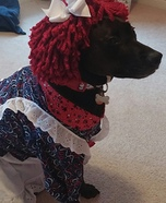 Homemade Costumes for Pets - Costume Works (page 18/50)