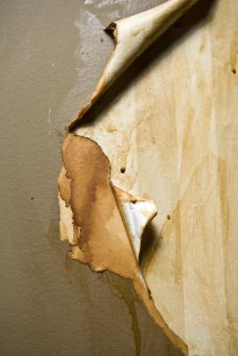 How to Prepare Walls for Paint After Removing Wallpaper | Home Guides | SF Gate