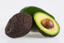 Preferential What Climate Does An Avocado Tree Need To Home Guides Sf Gate How Long Do Avocados Last After Being Picked How Long Do Avocados Last After Cut