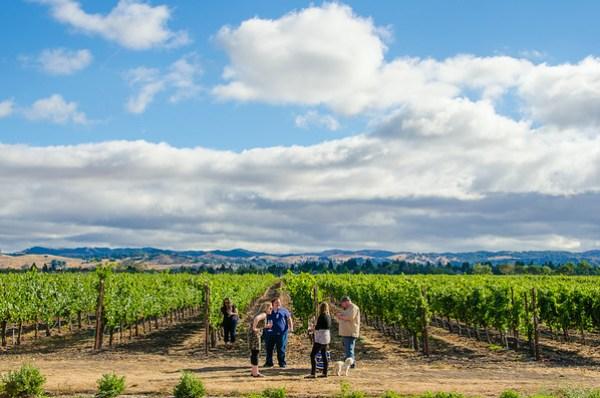 Enriquez Estate Wines